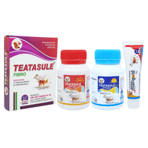 Homeopathic Veterinary Medicine kit for fibroid of teat in cow