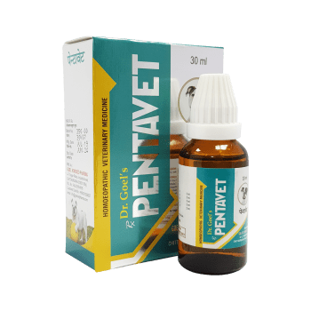 Homeopathic medicine for pets