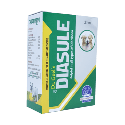 Diarrhoea in pets Medicine