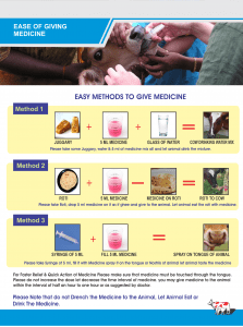 How to give Homeopathic medicine to animals