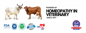 Homeopathy in Veterinary