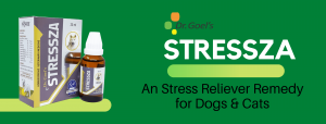 Dog Homeopathic Medicine for Stress