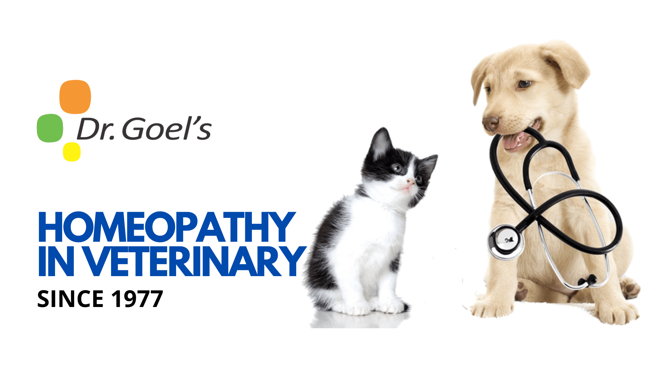 Homeopathy in Veterinary